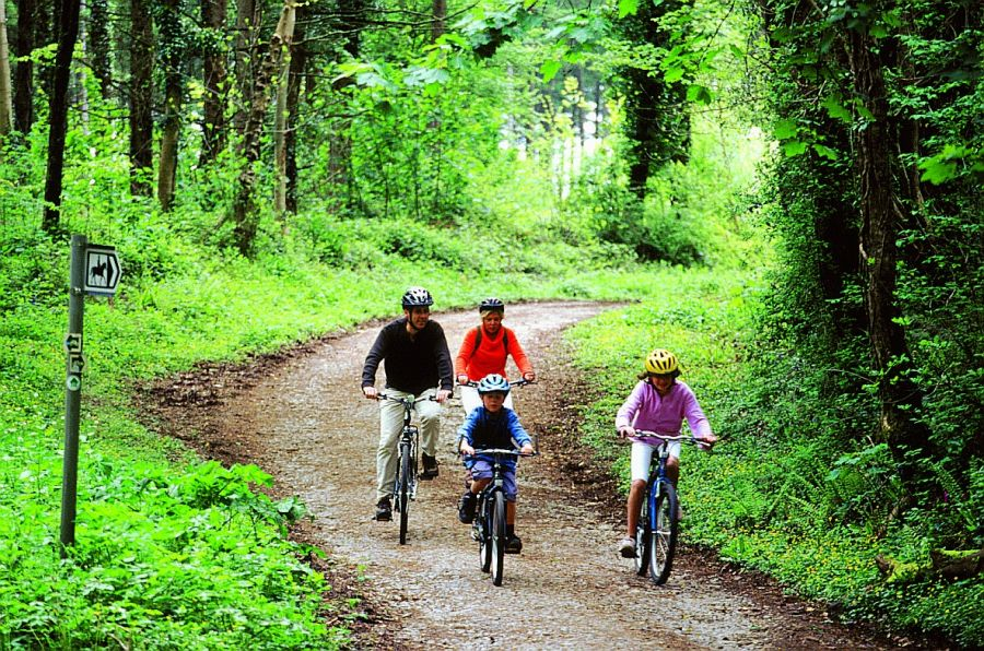 Canaston woods cycling